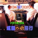 ボーイング747コックピット 成田への飛行/航空サウンド 武田一男プロデュース作品