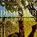 Whistle Tips/Dinosaur Feathers