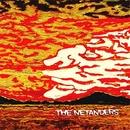 THE NETANDERS/NETANDERS