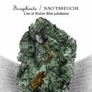 Seraphinite  Live at Motion Blue YOKOHAMA/竹内直