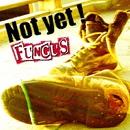Not yet !/FUNGUS