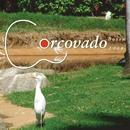 Bossa 2009/Corcovado