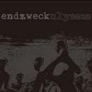 ulysses/endzweck