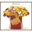 Prisma/Prisma