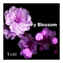 CHERRY BLOSSOM/Toshl