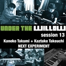 UNDER THE WILLOW session 13/ NEXT EXPERIMENT/タケウチカズタケ + 金子巧 (cro-magnon)
