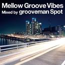 Mellow Groove Vibes/grooveman Spot