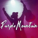 You Know Hearts/Purple Mountain