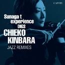 Sunaga  t experience DIGS CHIEKO KINBARA  ~CHIEKO KINBARA JAZZ REMIXIES/金原千恵子