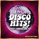 懐かしのディスコ・ヒッツ!Best Covers Vol.1/Get The Look Project