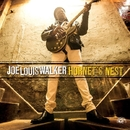 Hornet's Nest/JOE LOUIS WALKER