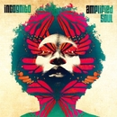 Amplified Soul/Incognito