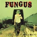 明日に向って/FUNGUS