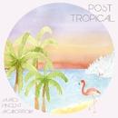 POST TROPICAL/JAMES VINCENT McMORROW