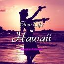 Slow Life in Hawaii(ハワイアン・リラクシング・ミュージック)/Moani Ke'ala Sessions