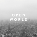 OPEN WORLD/another sunnyday