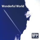 Wonderful World/Ayumi. (Astilbe×arendsii)