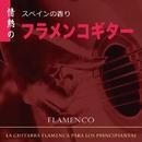 スペインの香り 情熱のフラメンコギター/小森皓平 Los Paquitos