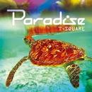 PARADISE/T-SQUARE