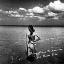 Brazilian Dreamin'/Joe Beck Trio
