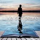 Like Scripture feat. Tobias Zaldua/NAVE