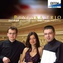 ドヴォルザーク:ピアノ三重奏曲 第 1番 & スメタナ:ピアノ三重奏曲/パネンカ・トリオ