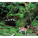 the ジブリ set/DAISHI DANCE
