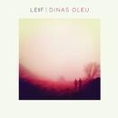 Dinas Oleu/Leif