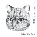 シュレディンガーの猫/Brian the Sun