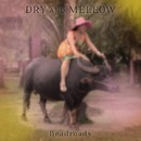 DRY AND MELLOW/Beadroads