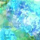 feel me... feat.Lily/kaoru-rock