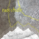 radiotooth/Yasei Collective