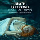 Drag Me Down – Headbanging to One Direction/Death Blossoms