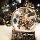 Merry Christmas (24bit/96kHz)/Suara
