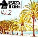 Ibiza Tribe Vol.1/Varius Artist