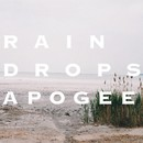 RAINDROPS/APOGEE