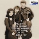 ベートーヴェン: ピアノ三重奏曲第 5番 &第 6番/クーベリック・トリオ