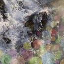 Wherever Waterfall/Kei Sato