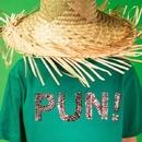 Pun!/PunPunCircle