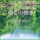 癒しの響き ~湖畔のさざなみとオカリナのハーモニー~/リラックスサウンドプロジェクト