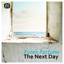 The Next Day/Evren Furtuna
