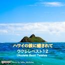 ハワイの波に癒されて ウクレレベスト12/藤岡 秀夫
