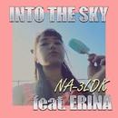 INTO THE SKY feat.ERINA/NA-3LDK