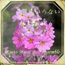 翼はいらない music box/Kyoto Music Box Ensemble