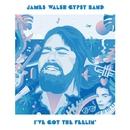 I've Got The Feelin'/JAMES WALSH GYPSY BAND