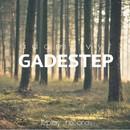 Gadestep EP/Adam Vyt