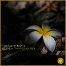 癒しのオルゴール・クラシック Vol.4(オルゴールミュージック)/西脇睦宏