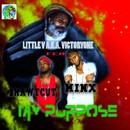 My Purpose/Little V aka Victoryone