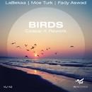 Birds (Ceasar K Rework)/Labekaa