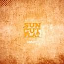 Navigate/Sun Cut Flat